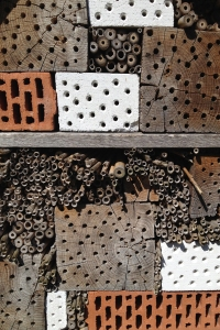 The Bee Hotel offers various room sizes. Photo: RM